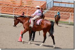 Open Horse Show 780