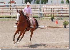 Open Horse Show 701