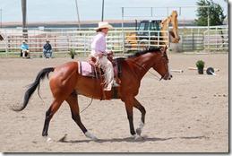 Open Horse Show 798