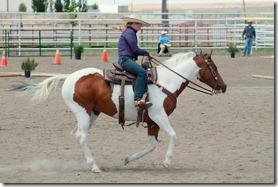 Open Horse Show 728