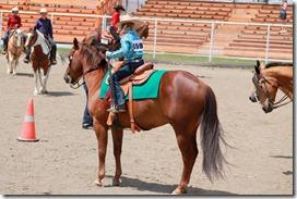 Open Horse Show 735