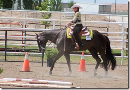 Open Horse Show 744