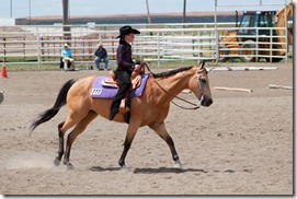 Open Horse Show 779