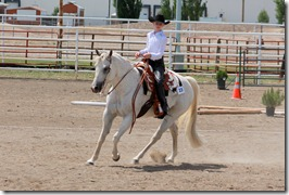Open Horse Show 833