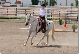 Open Horse Show 833