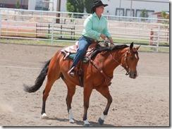 Open Horse Show 875