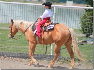 Open Horse Show 900