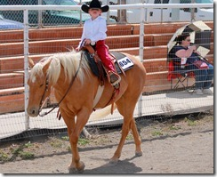 Open Horse Show 914