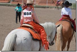 Open Horse Show 915