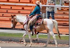Open Horse Show 922