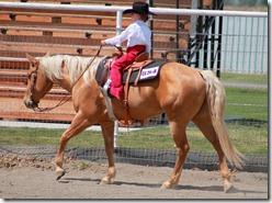 Open Horse Show 924