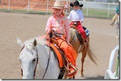 Open Horse Show 950