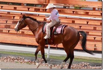 Open Horse Show 1031