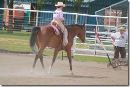 Open Horse Show 1063