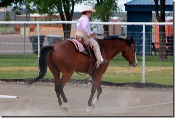 Open Horse Show 1080