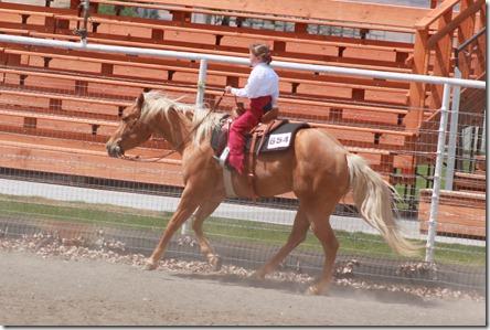 Open Horse Show 1035