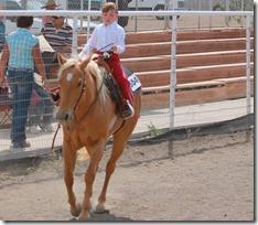 Open Horse Show 1049
