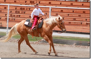 Open Horse Show 1070