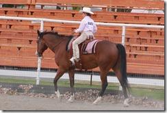 Open Horse Show 1107