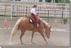 Open Horse Show 1164