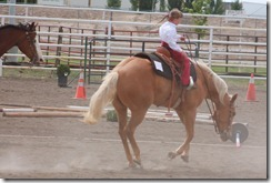 Open Horse Show 1165