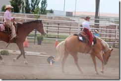 Open Horse Show 1167