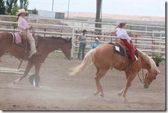Open Horse Show 1168