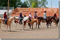 Open Horse Show 1175