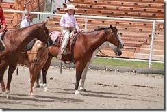 Open Horse Show 1176