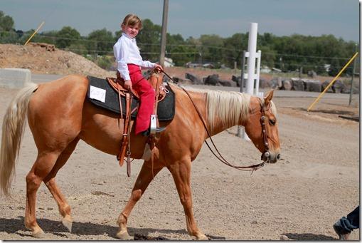 Open Horse Show 1178