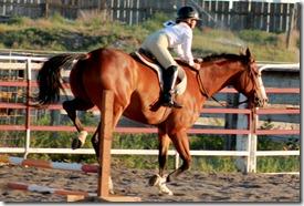 Elmore County 4-H Horse Show 2012 343