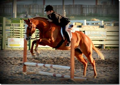 Elmore County 4-H Horse Show 2012 377