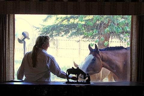 Jessie's Dorky Horses (11).JPG