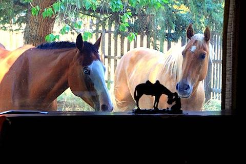 Jessie's Dorky Horses (2).JPG